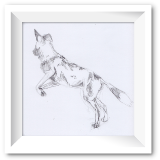 Pencil sketch of a wild dog
